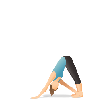 Yoga Pose: Revolved Downward-Facing Dog (Parivṛtta Adho Mukha Śvānāsana)