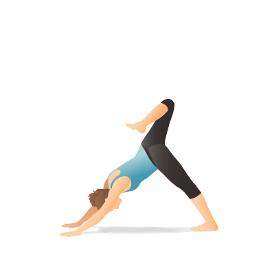 Yoga Pose: Downward-Facing Dog with Stacked Hips