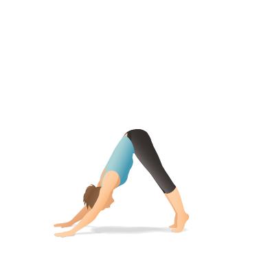 yoga pose downwardfacing dog with toe raises  pocket yoga