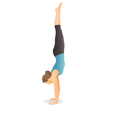 Yoga Pose: Handstand, Downward-Facing Tree (Adho Mukha Vṛkṣāsana)
