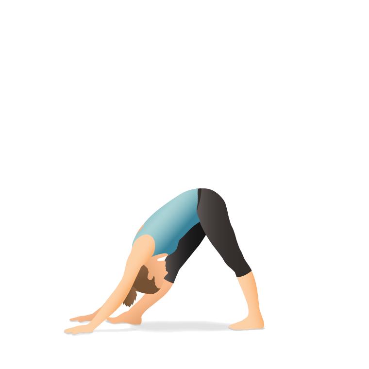 Yoga Pose: Pyramid (Pārśvottānāsana)