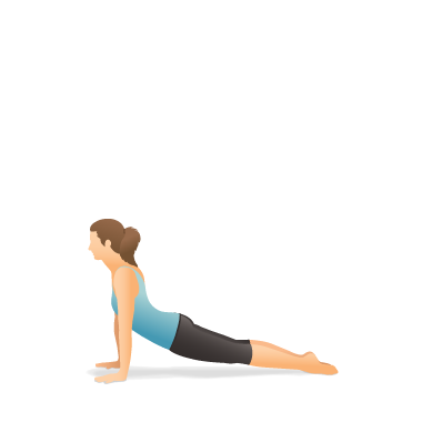 Yoga Pose: Upward-Facing Dog (Ūrdhva Mukha Śvānāsana)