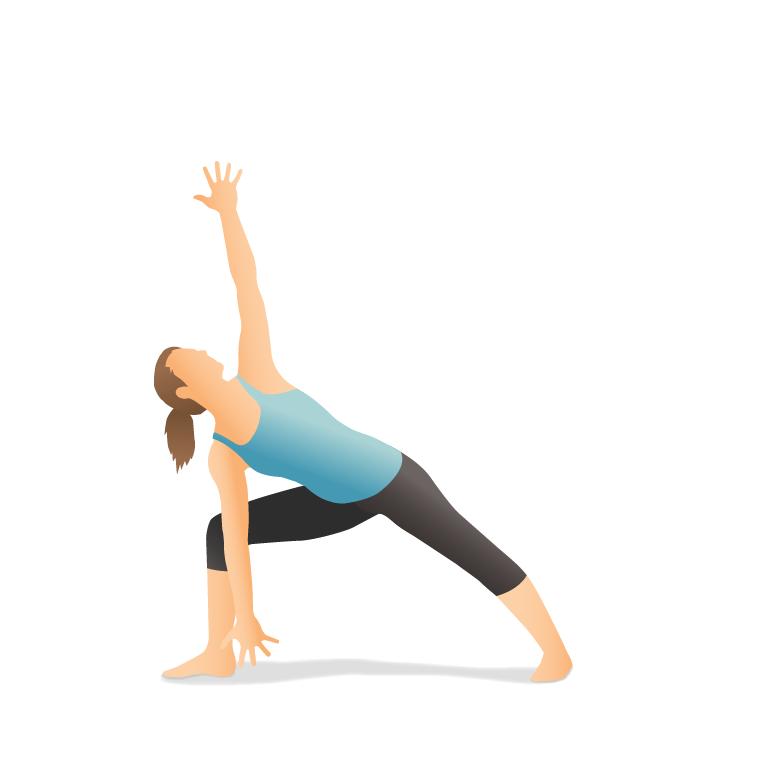 Yoga Pose: Warrior II Forward Bend (Pārśvakoṇāsana)